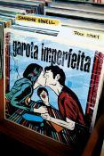 GAROTA IMPERFEITA