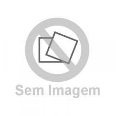 Estegossauro e seus amigos